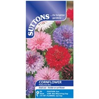 Suttons  Cornflower Polka Dot Mix Flower Seeds