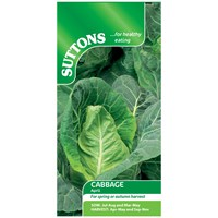 Suttons  Cabbage April Vegetable Seeds