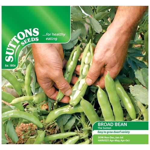 Suttons  Broad Bean The Sutton (Dwarf) Vegetable Seeds